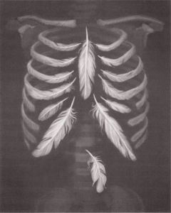 X-ray of rib cage with feathers